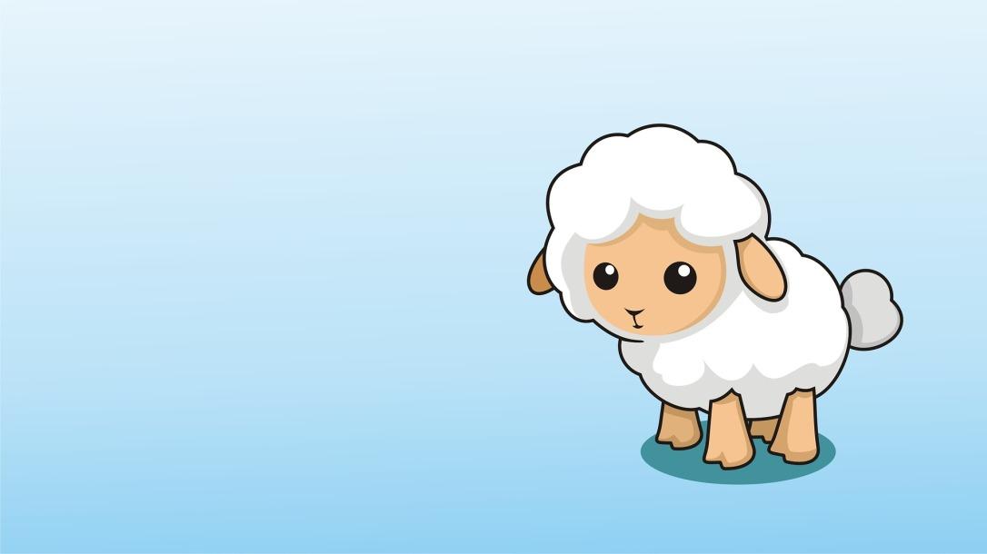 lamb-2528121_1920